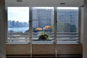 Flower in hotel hallway